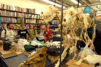 Students examining bones with a faculty member